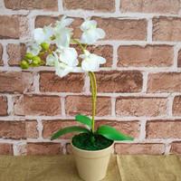 Bunga Anggrek Artificial Pot Plastik - Tanaman Hias Dekorasi