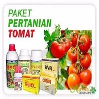 Paket Pupuk Organik Untuk Budidaya Tanaman Tomat
