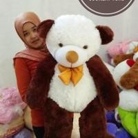 Boneka beruang cosi luna 2