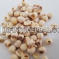 Biji Bunga Teratai (Lotus Seeds)