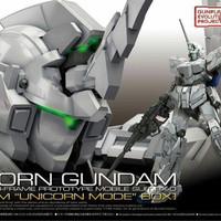 Bandai RG Unicorn Gundam Premium Batch I