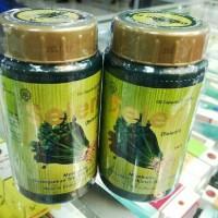 seleri 100 seledry borobudur