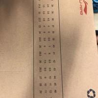 Sepatu Badminton Lining Astra - Original Promo