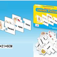 match it organ, mainan edukasi anak, mainan pendidikan anak, puzzle