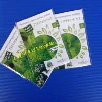 Benih Peppermint ( mint ) kemasan maica leaf isi 50 seed