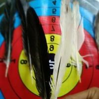 Bulu Natural Untuk Sirip Anak Panah/Vanes/wing/Busur
