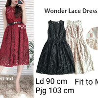 Wonder Lace Dress Import - Ivory