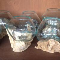 Vas Pot Terrarium Kaca kayu akar