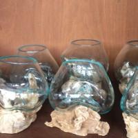 aquarium akar kayu bali
