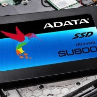 (Murah) ADATA SU800 SSD 128GB