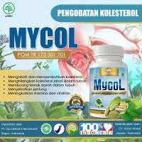 Liza Herbal MYCOL Obat Herbal Menetralkan Kadar Kolesterol