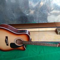 Gitar akustik elektrik guardian