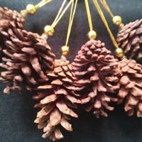 Hiasan pohon natal buah pinus isi 6 pcs