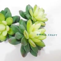 Bunga Artificial Teratai Succulent