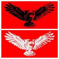 Cutting Sticker / Stiker Kaca Mobil Motif Burung Hantu / Owl