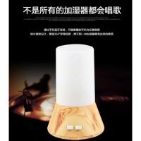 Humidifier Aromatheraphy Machine Lampu Tidur LED RGB Li Berkualitas