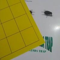 Gluepad/Lem lalat/ glue trap /plykacher