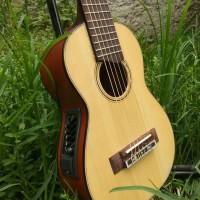guitalele elektrik / copy GL1 / gitar mini / gitar akustik