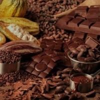 Bibit Parfum Coklat / Choklat / Cokelat / Chocolate Fragfrance (100ml)