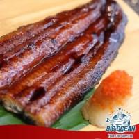 Unagi Kabayaki / Ikan Sidat @200gr |Premium Quality (Halal)