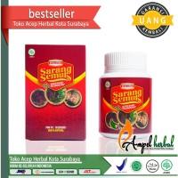 Walatra Sarang Semut Kapsul 100% Original Asli Surabaya