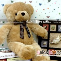 Boneka Teddy Bear ( BT - 31 )