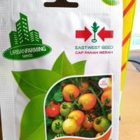 Benih bibit tomat TYMOTI F1 Panah merah original pack murah