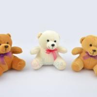 Boneka Teddy Bear Kecil / Mini / Beruang Kecil Polos Murah