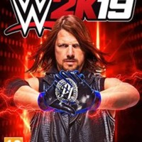 WWE 2K19 Game PC-DVD