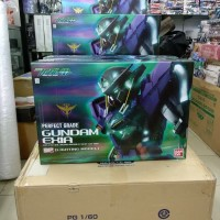 PG Exia Lightnig Moodel/Perfect Grade Gundam Exia Lightning model