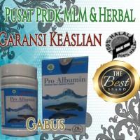 Pro Albumin Ekstrak Ikan Gabus Ash Shihah Original Proalbumin