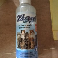 Shampo Kucing 250 ML - Ziggi Cat Shampoo - Lavender