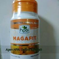 Magafit HPAI (Obat maag akut)