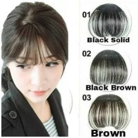 PONI PALSU KOREA / BANGS EXTENSIONS /BANGS HAIR CLIP /PONI P