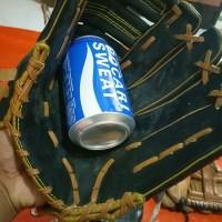 glove softball/baseball