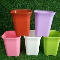 Pot Bunga | Pot plastik | POT 8 cm | POT PLASTIK | POT NKT | POT KOTAK - Putih