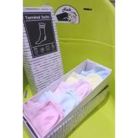 Kaos Kaki Wanita Pendek Mata Kaki Warna Pastel - Terminal Socks