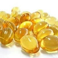 Minyak Ikan Kapsul Kucing Anjing Fish Oil Capsule for Cats or Dogs