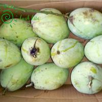 buah mangga mengkal indramayu