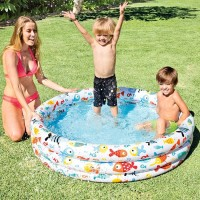 Kolam Renang Anak Fishbowl Holiday Pool 1.32m x 28 cm - INTEX #59431