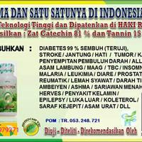 Obag Herbal manjur untuk Diabetes Dll (SARI UNCARIAE)
