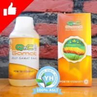 QnC Jelly Gamat Obat Multi Khasiat Teripang Mas