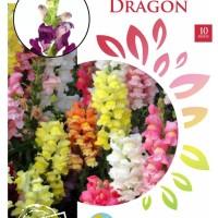 Bunga Snap Dragon Maica Leaf 10 Seeds