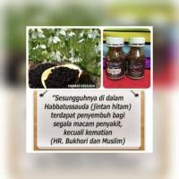 Minyak habbatussauda extra propolis trigona 200 kapsul AL syifaa'