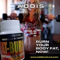ADDIS Nature Fat Burner Max 50 Caps New Original
