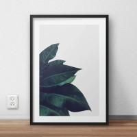 """Premium Poster Bingkai Kayu Dengan Matboard Enlighten"""""""