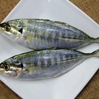 ikan selar per 500gram