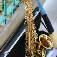 Saxophone alto PALADIN Import quality include CASE full equip