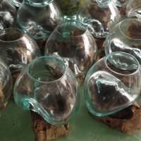 aquarium kaca akar kayu kerobokan bali kecil