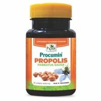 PROCUMIN PROPOLIS - Sinergi Propolis dan Habatussauda
